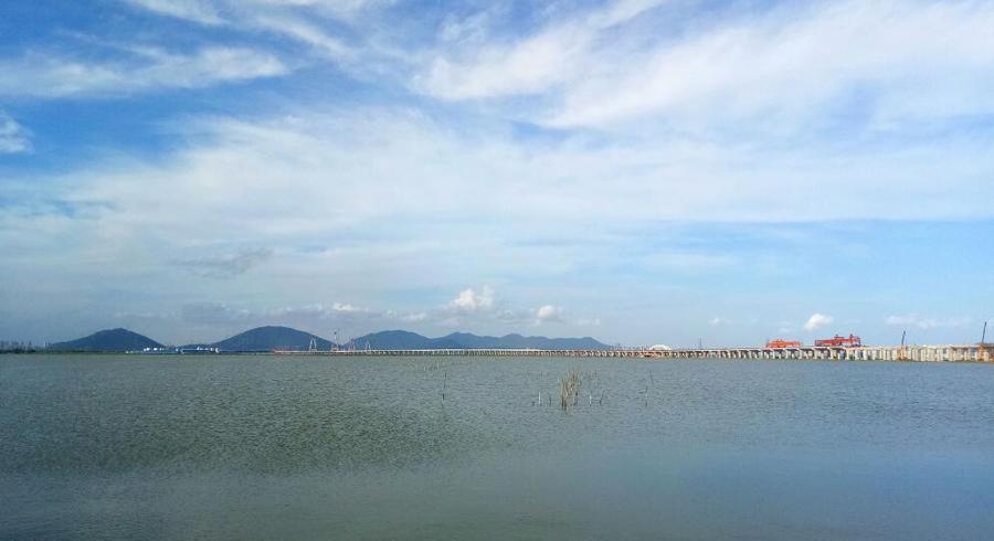 中铁十一局二公司珠海洪鹤大桥项目最后一个承台金洋2牌混凝土浇筑完成